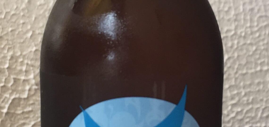 cerveza artesana siete vidas