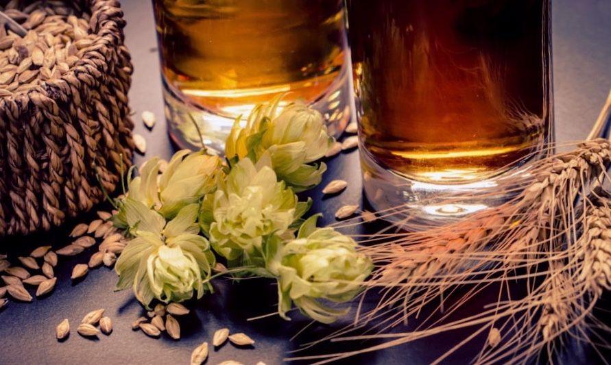 como hacer cerveza artesanal